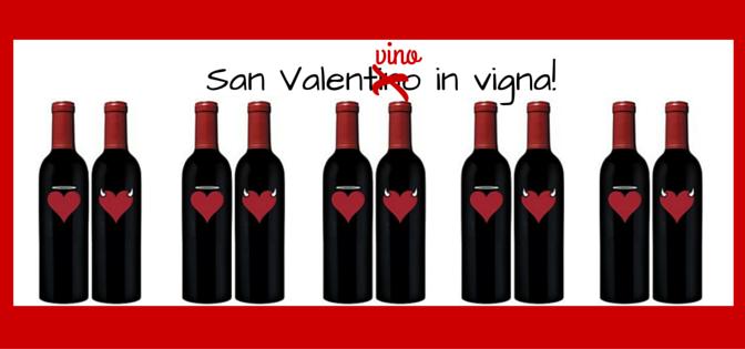 Sanvalen…vino in vigna!