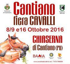 Cantiano: doppio week end per la Fiera dei Cavalli