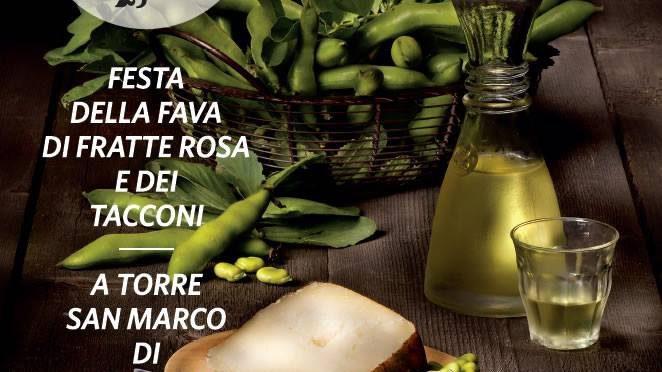La fava di Fratte Rosa diventa presidio Slow Food
